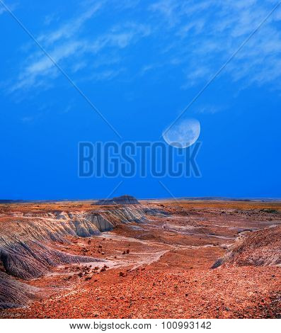 Arizona Petrified Forest And Moon