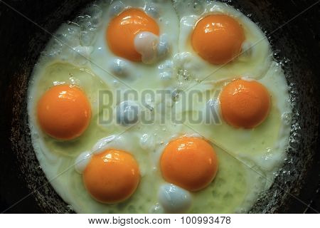 6 Eggs In A Frying Pan