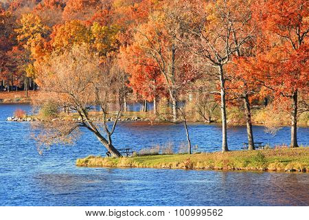 Autumn trees at the shore of  blue water lake