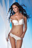 Постер, плакат: Sexy Brunette Elegant Lady In Lingerie