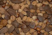 pic of beechnut  - an assortment of nuts for any nut lover - JPG