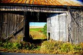 stock photo of mennonite  - looking through an abandoned dairy barn we can see what was once a pasture is now used as a soybean field - JPG