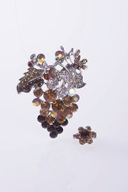 pic of brooch  - crystal brooch or fashion brooch on the background - JPG