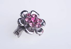 foto of brooch  - crystal brooch or fashion brooch on the background - JPG