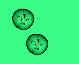 image of microbes  - Two microbe green seen in a microscope in a medical office - JPG