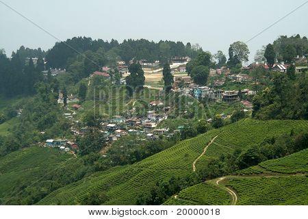 Ville de montagne, Dargeeling