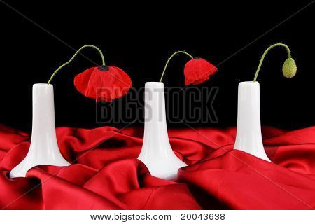 White Vases With Poppy Flowers