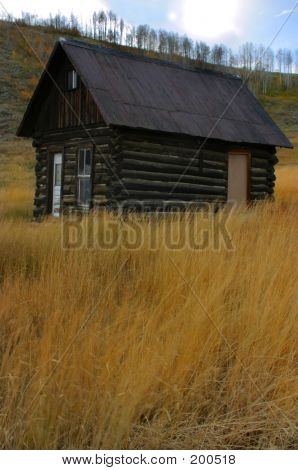 Cabin On Trough Road Fall Portrait