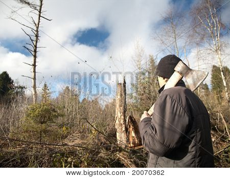 Man With An Axe Looks At The Tumbled Down Wood