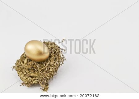 Gold Nest With Successful Golden Egg