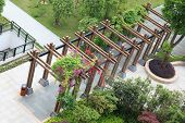 picture of pergola  - A small open wooden gazebo or pavilion in a garden - JPG