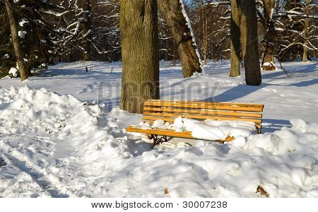 Yellow Park Bench Covered With Snow In Winter