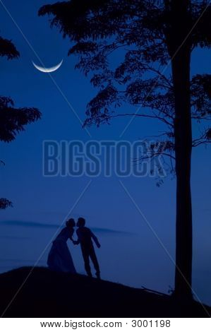 Bride And Groom In Blue Night