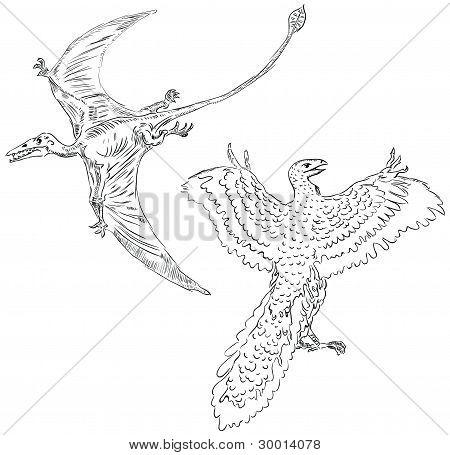 Pterodáctilo e aves antigas