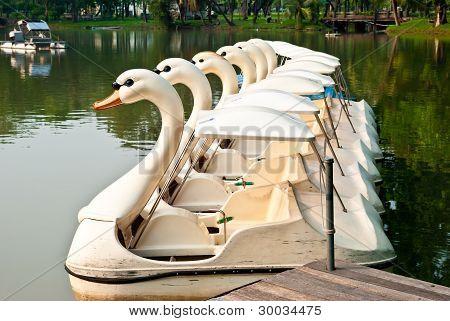 A group of ducks pleasureboat at Lumpini Bangkok Thailand
