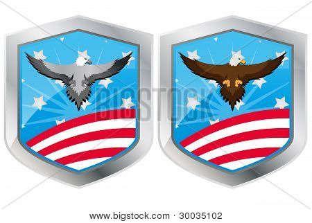 Usa Eagle Shield
