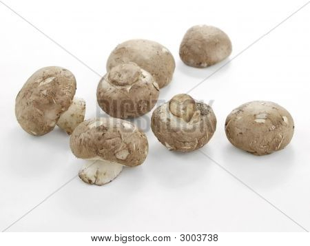 Collection Of Cremini Mushrooms