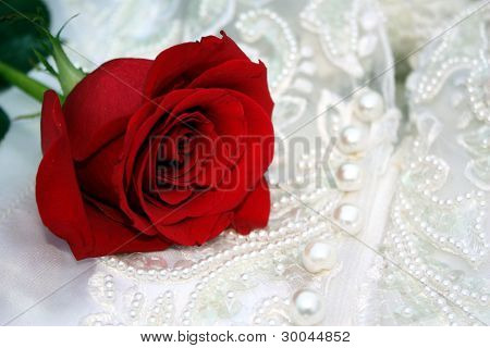 Red Rose on Decorated Satin Dress