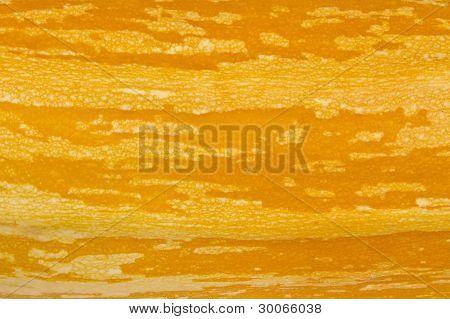 Yellow Marrow Texture