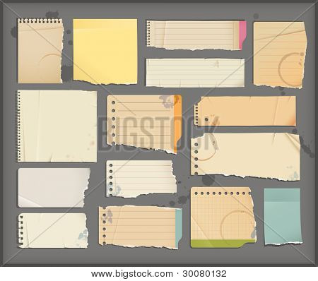 notebook torn  paper  objects