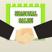 Handwriting Text Seasonal Sales. Concept Meaning Discount Which Is Offered On Goods At Particular Se poster