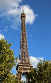 Eiffel Tower Also Called Tour Eiffel In French Language In Paris With Blue Sky And Trees poster