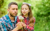 Dad And Daughter Collecting Dandelion Flowers. Keep Allergies From Ruining Your Life. Seasonal Aller poster