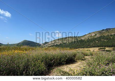Valle de la montaña - paisaje, Isla de Sicilia, Italia