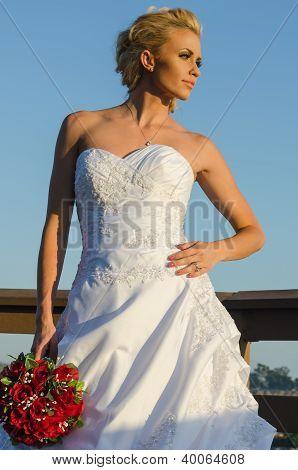 Wedding Photo Shoot In Castaway Park, Newport Beach, Ca, Usa