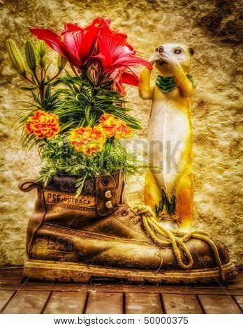 Creative Boot