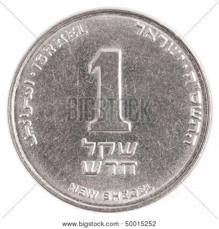 One Israeli New Sheqel Coin