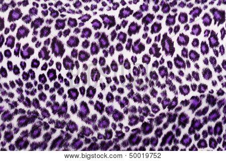 Leopard Printed in purple