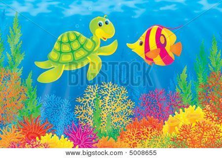 Korallenfische und turtle