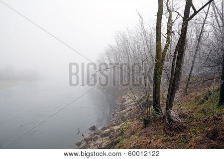 River Bank Shrouded In Fog