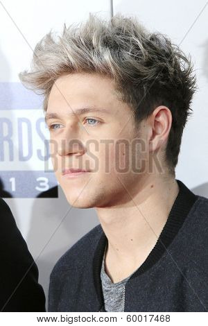 LOS ANGELES - NOV 24: Niall Horan, One Direction at the 2013 American Music Awards at Nokia Theater L.A. Live on November 24, 2013 in Los Angeles, California
