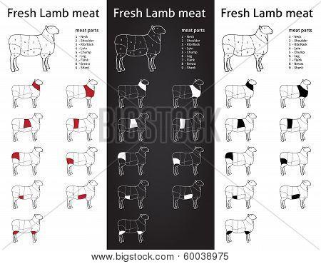 FRESH LAMB meat parts