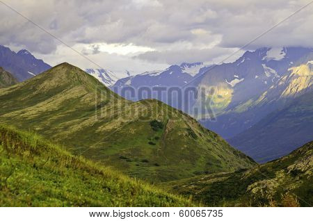 Alaskan wild