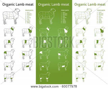 ORGANIC LAMB meat parts set