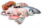 stock photo of mullet  - Fresh catch of fish and other seafood isolated on white background - JPG