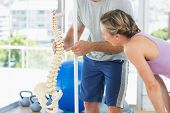 stock photo of spinal cord  - Fitness trainer showing model of spinal cord to woman at gym - JPG