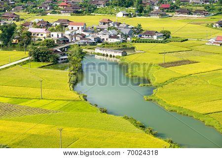 Rural Area In Vietnam