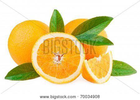 oranges fruits over white