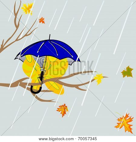 Tree  With Butterfly Under Umbrella