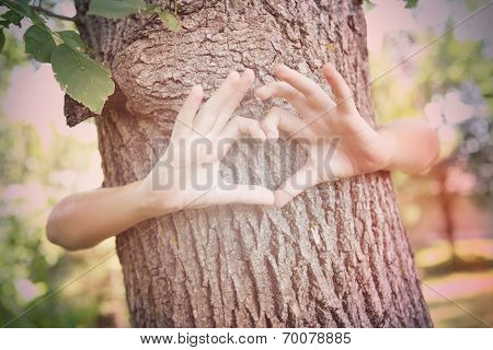 Child's hands making a heart shape on a tree trunk. Instagram effect