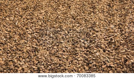 Huge Amount Of Brazil Nuts