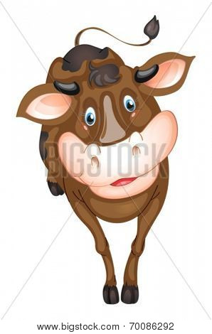Ilustration of a brown cow