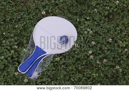 Tennis ball on racket for beach game