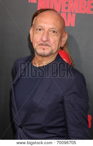 LOS ANGELES - AUG 13:  Sir Ben Kingsley at