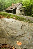 picture of gatlinburg  - A log cabin in the woods with rocks  - JPG
