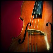 pic of double-bass  - Close - JPG
